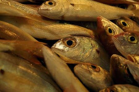 Fresh fish in the market of Chania, Crete, Greece Imagens