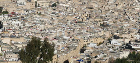 Aerial view of the tightly packed medina of Fes, Morocco, Africa