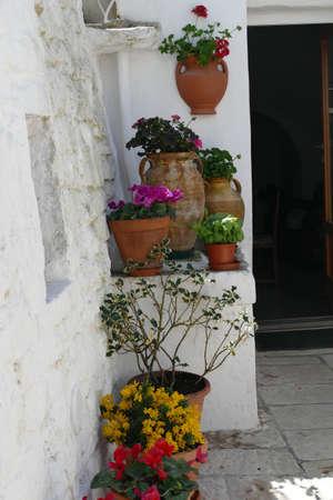 Flowers along a white washed trulli wall in Alberobello, Puglia, Italy Standard-Bild - 121490149