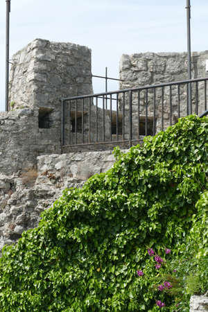 Greenery on the stone walls of the Kanli Kula Fortress,Herceg Novi, Montenegro Redakční