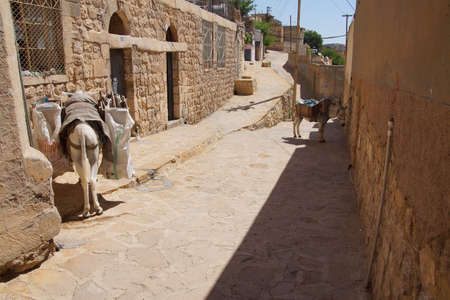 MARDIN, TURKEY - JUN 10, 2014 - Donkey waiting in a narrow street of  Mardin,  Turkey