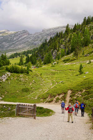 Hikers on the trails of the Seiser Alm meadows of the Dolomites Alps, Italy