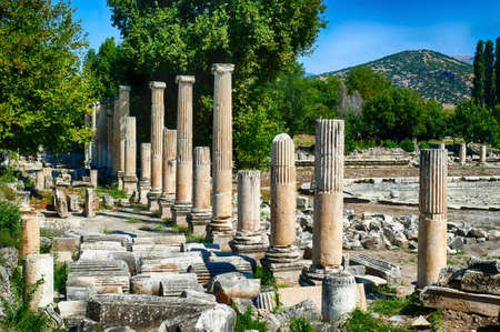 Ionic  columns surround ruins of the gymnasium in Aphrodisias,  Turkey 写真素材 - 132313515
