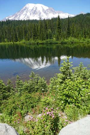 Volcano Mt Rainier mirrored in Reflection Lake, Mount Rainier National Park, Washington