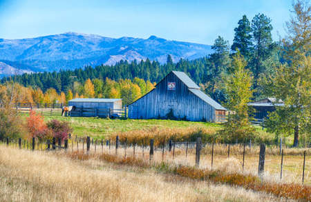 Horse and old barn in pasture along the Teanaway river near Cle Elum in eastern Washington Banque d'images - 131508421