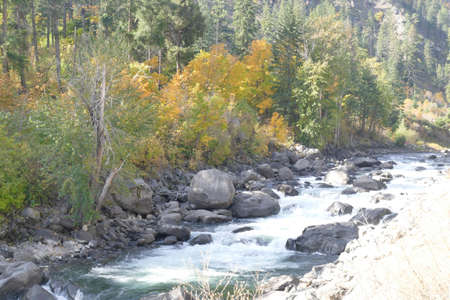 Goldenfall colors along  the Wenatchee River in Tumwater Canyon in eastern Washington Stock Photo