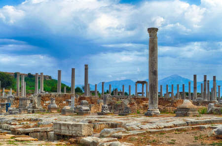 Ionic columns on the collonaded street  of ancient  Perge,  Turkey