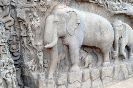 Bas relief of elephant rock cut sculpture of Arjuna's penance, Pallava dynasty 7th century, Mahabalipuram Mamallaapuram, India