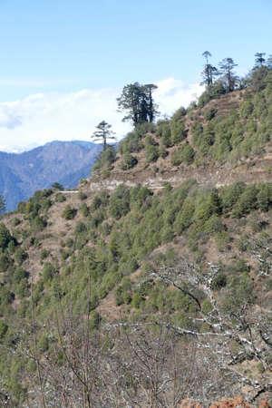 View of snowy Himalaya mountains from pass near Punakha, Bhutan