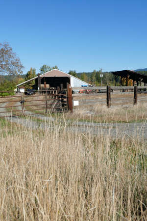 Dried grass frames an old barn along the Teanaway river near Cle Elum in eastern Washington Banque d'images - 140372450