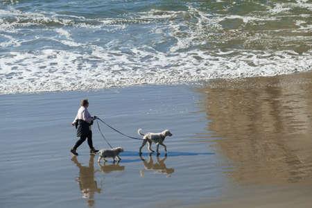 NEWPORT, OREGON - NOV 20, 2019  -  Silhouettes of dog and owner on the beach near  Newport, Oregon 報道画像