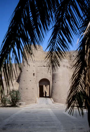 Outer walls of medieval city and fortress,Bam, Iran, Middle East 報道画像