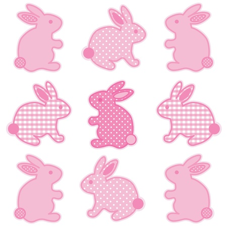 Baby Bunny Rabbits, Pastel Pink Gingham and Polka Dots, for baby books, scrapbooks, albums, spring, Easter.  Vector