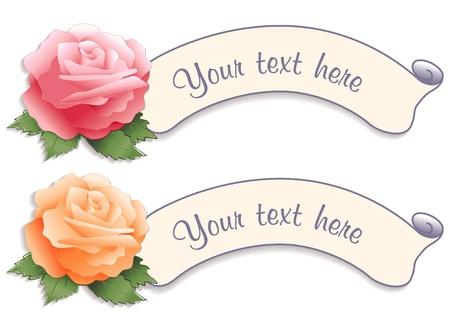 Tags Label Vintage con fiori di rosa Archivio Fotografico - 12392300