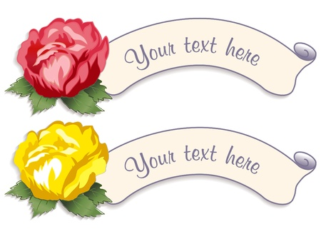 Vintage Label Tags with Damask Rose Flowers Vector