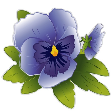 Sky Blue Pansy Flowers Vector