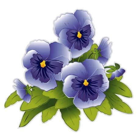 Sky Blue Pansy Bloemen Vector Illustratie