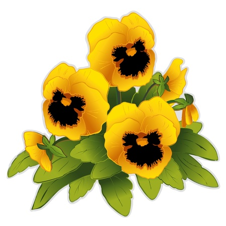 Golden Pansy Flowers Vector