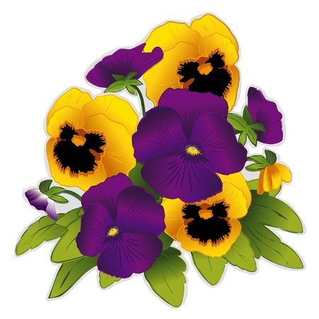 natura morta con fiori: Pansy Fiori viola e oro