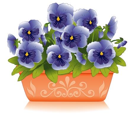 ollas de barro: Blue Sky Pensamiento Flores en Maceta Maceta decorativa Clay Vectores