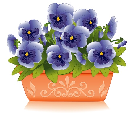 pansies: Sky Blue Pansy Flowers in Decorative Clay Flowerpot Planter Illustration