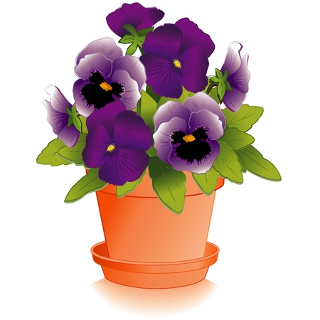 Lavender and Purple Flowers in Clay Flowerpot Vector