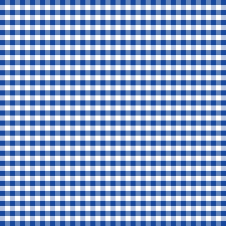 Seamless Pattern, Blue and White Gingham Check Background     Vector