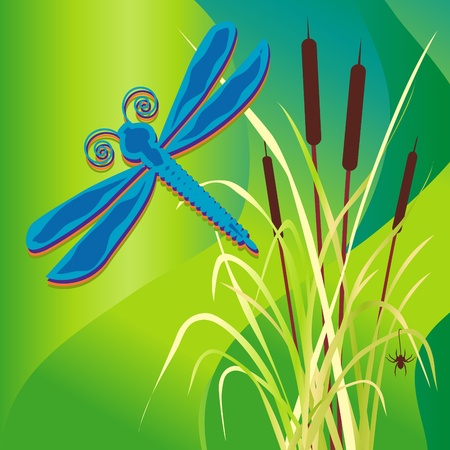 Dragonfly over Cattail Marsh Vector