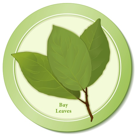 Bay Leaves Herb Icon