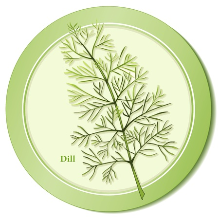 Dill Weed Herb Icon