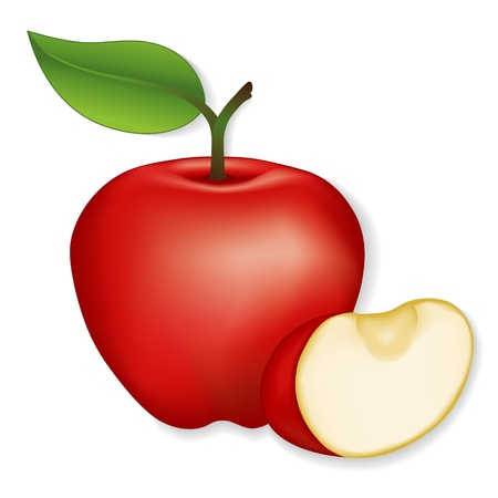 Apple and apple slice illustration isolated on white  EPS8 compatible