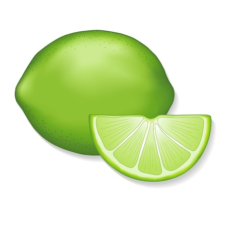 limon: Lime and lime slice illustration isolated on white  EPS8 compatible
