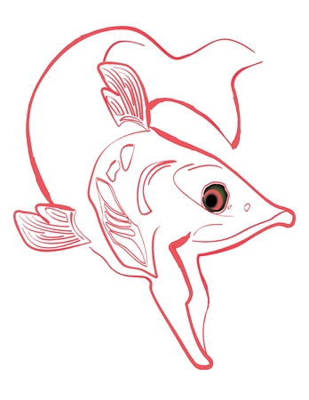 Swimming Salmon line drawing illustration, isolated on white background Vector