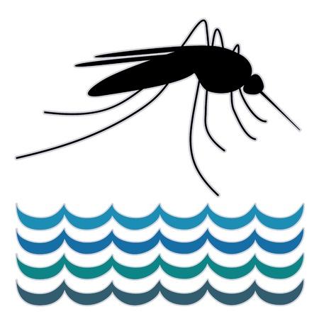 Mosquito, stilstaand water, grafische illustratie, geïsoleerd op witte achtergrond