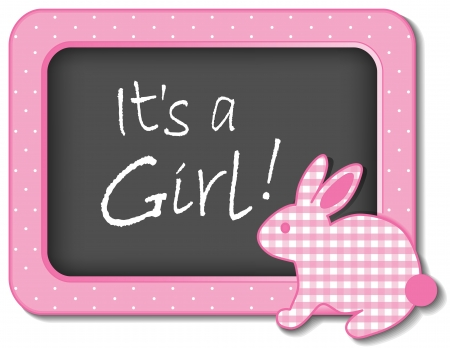 it s a girl: It s a Girl  Baby Bunny Rabbit Bulletin Board Announcement in pastel pink gingham and polka dots