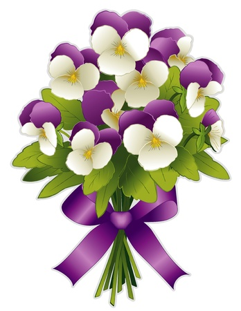 pansy: Johnny Jump Ups Bouquet, Spring Pansy flowers in purple and white with ribbon bow  Isolated on white background   Illustration