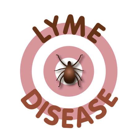 Lyme Disease illustration, tick, bulls-eye rash, title text isolated on white   Vector