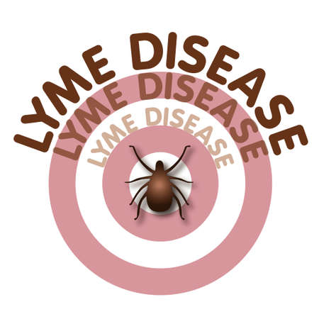 lyme: Lyme Disease illustration, tick, bulls-eye rash, fan title text isolated on white