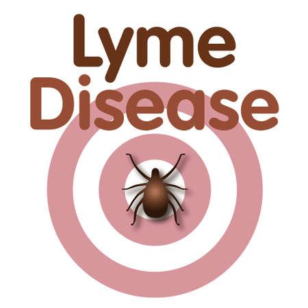 Lyme Disease illustration, tick, bulls-eye rash, title text isolated on white   Stock Vector - 20462793