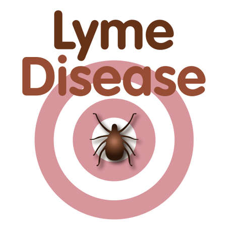 lyme: Lyme Disease illustration, tick, bulls-eye rash, title text isolated on white