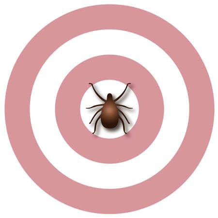 bullseye: Lyme-Borreliose Illustration, tick, Bullen-Augen Ausschlag, isoliert auf wei�