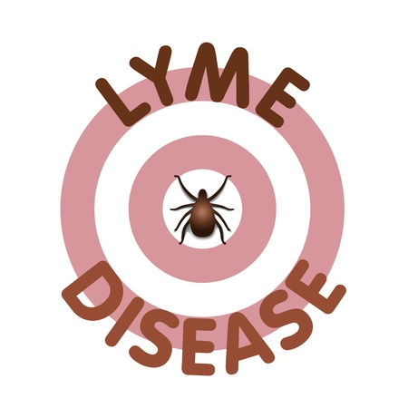 lyme: Lyme Disease graphic illustration, bulls-eye rash, title text in concentric circle surrounding tick, isolated on white   Illustration