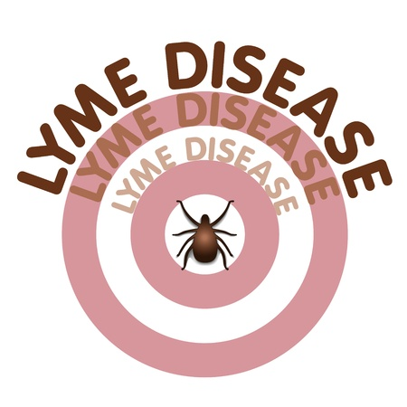 Lyme Disease graphic illustration, bulls eye rash, title text in concentric circles surrounding tick,  isolated on white