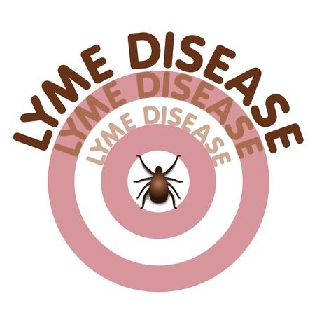 Ziekte van Lyme grafische illustratie, stieren oog huiduitslag, titel tekst in concentrische cirkels rond teek, geïsoleerd op wit Stock Illustratie