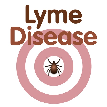 lyme disease: Lyme Disease graphic illustration, bulls-eye rash, tick, title text isolated on white