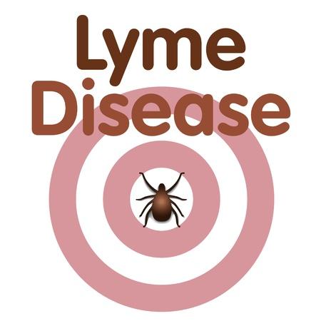 lyme: Lyme Disease graphic illustration, bulls-eye rash, tick, title text isolated on white