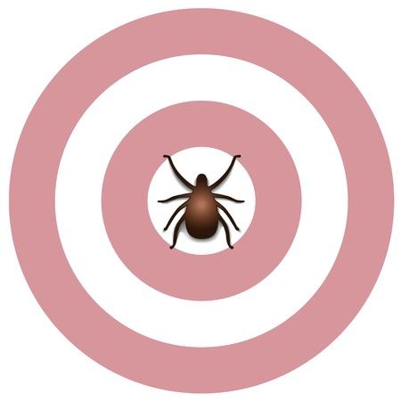 Lyme Disease graphic illustration, bulls eye rash, tick, isolated on white