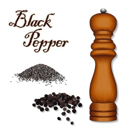 pepe nero: Macina pepe, macina spezie, pepe nero in grani interi, pepe macinato; universali per la cucina, francese Bouquet Garni, isolato su sfondo bianco Vettoriali