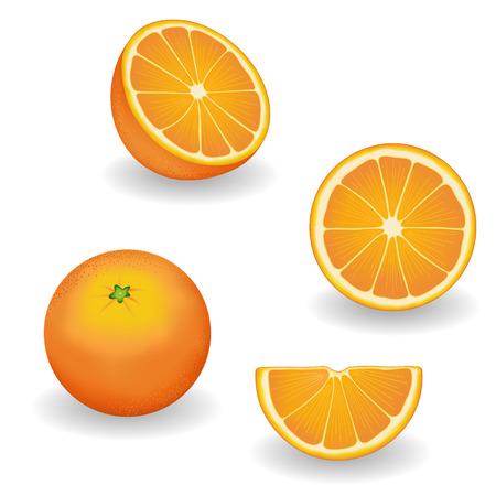 orange slice: Sinaasappelen, verse, natuurlijke biologische voeding; vier uitzicht hele, halve, plak, wig; Grafische illustraties geïsoleerd op witte achtergrond