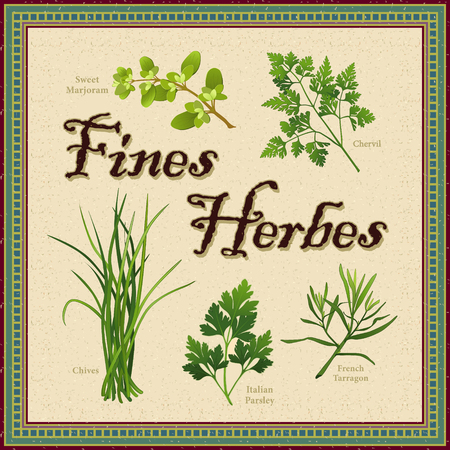 Fines Herbes; classic French herb blend of Sweet Marjoram, Chervil, Chives, Italian Parsley, French Tarragon; distressed mosaic frame and background